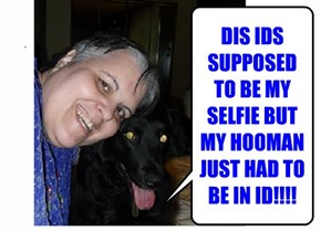 DIS IDS SUPPOSED TO BE MY SELFIE BUT MY HOOMAN JUST HAD TO BE IN ID!!!!