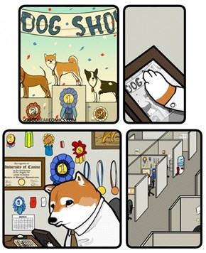 Doge As They Get Old