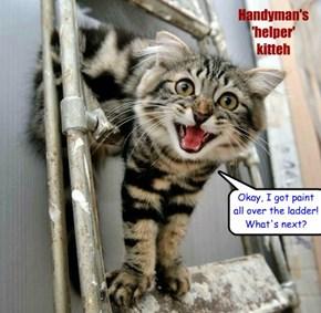 HANDYMAN'S HELPER KITTEH -  helps you look like you're working