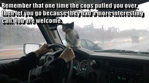 Remember that one time the cops pulled you over,  then let you go because they had a more interesting call. You are welcome.