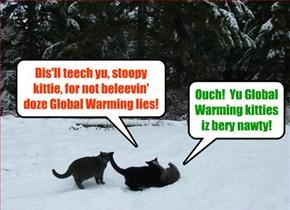Global Warming True Believer kitties attack Global Warming Denier kittie!