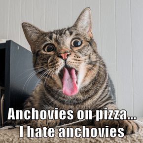 Anchovies on pizza...       I hate anchovies