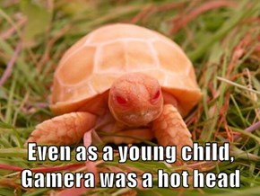 Even as a young child, Gamera was a hot head