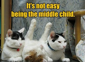 It's not easy being the middle child.