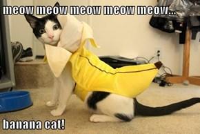 meow meow meow meow meow...  banana cat!