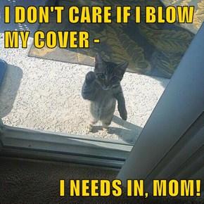 I DON'T CARE IF I BLOW MY COVER -  I NEEDS IN, MOM!