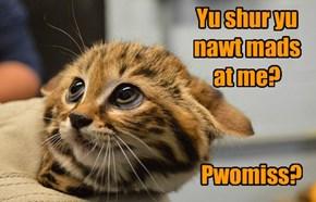 And yu still luvz me?