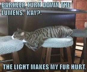 BARKEEP, TURN DOWN THE LUMENS, 'KAY?.  THE LIGHT MAKES MY FUR HURT.