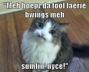 """Meh hoepz da toof faerie bwings meh  sumfin' nyce!"""