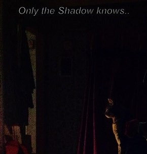 Only the Shadow knows..