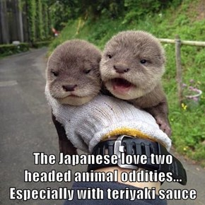 The Japanese love two                        headed animal oddities...                              Especially with teriyaki sauce