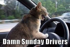 Damn Sunday Drivers
