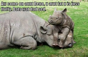 Aw come on aunt Reno, u arnt fat u is juss fluffy. Dats wat dad sed.