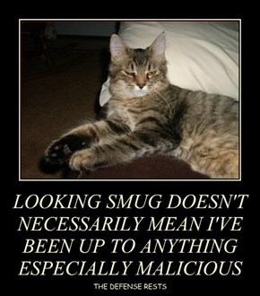 LOOKING SMUG DOESN'T NECESSARILY MEAN I'VE BEEN UP TO ANYTHING ESPECIALLY MALICIOUS
