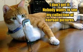 I don't get it. Nobody wants to see my collection of hairball pictures.