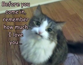 Before you come in, remember how much I love you...