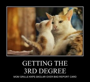 GETTING THE 3RD DEGREE