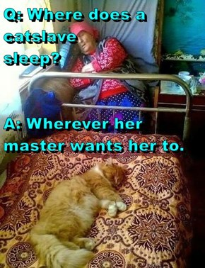 Q: Where does a catslave                               sleep? A: Wherever her master wants her to.