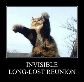 INVISIBLE LONG-LOST REUNION