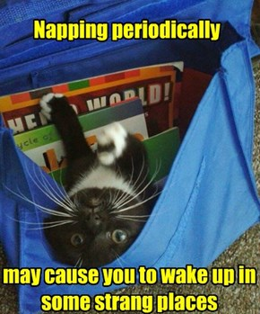 Napping periodically
