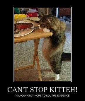 CAN'T STOP KITTEH!