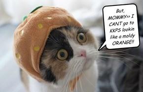 But, MOMMY>> I CANT go to KKPS lookin like a moldy ORANGE!!