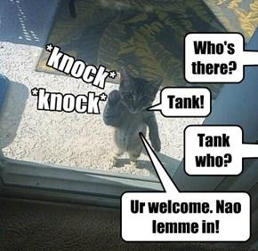 Tankwho!
