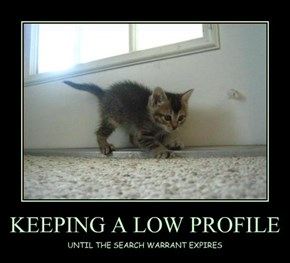 KEEPING A LOW PROFILE
