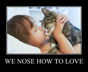 WE NOSE HOW TO LOVE