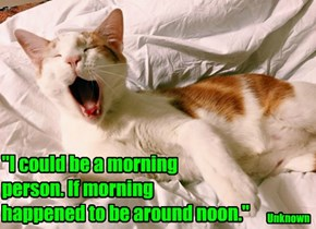 """I could be a morning  person. If morning  happened to be around noon."""