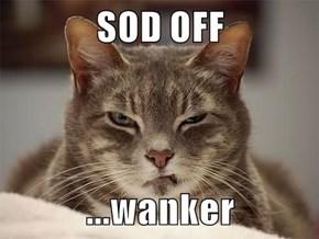 SOD OFF  ...wanker