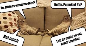 Yo, Mittens whatcha doin?