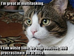 I'm great at multitasking.  I can waste time, be unproductive, and procrastinate all at once.