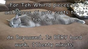 For Teh Whirld pieces Ub anchobees Ai gots sents ta to teh Chef  An Beyaawnd. Is BERY hard wurk. 11benty minuts!