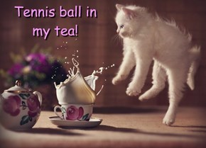 Tennis ball in my tea!