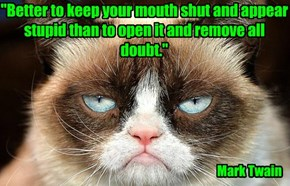 """""""Better to keep your mouth shut and appear stupid than to open it and remove all doubt."""""""