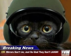 Breaking News - Mirrors Don't Lie; Just Be Glad They Don't LAUGH!