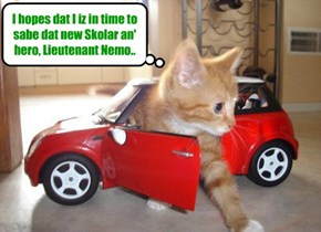KKPS/Giant Anchoobie Battle: Dr. Tinycat arrives at KuppyKakes Preppy Skool to attend to teh injuries ob Lieutenant Nemo!