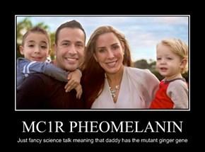 MC1R PHEOMELANIN