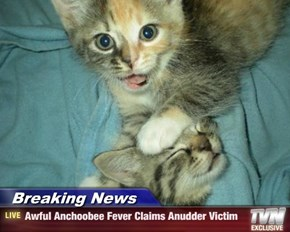 Breaking News - Awful Anchoobee Fever Claims Anudder Victim