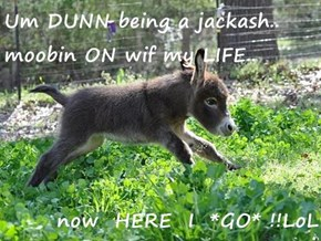 Um DUNN being a jackash.. moobin ON wif my LIFE..  now  HERE  I  *GO* !!LoL