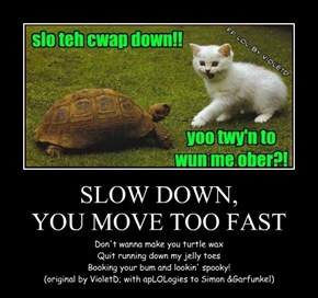 SLOW DOWN, YOU MOVE TOO FAST