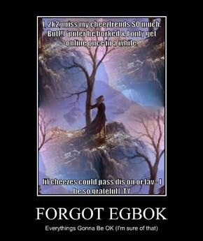 FORGOT EGBOK