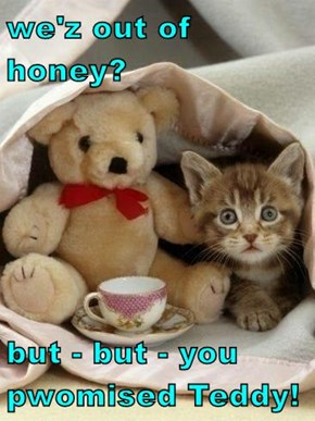 we'z out of honey?  but - but - you pwomised Teddy!