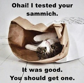 Ohai! I tested your sammich.  It was good.                  You should get one.