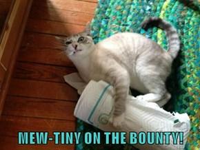 MEW-TINY ON THE BOUNTY!