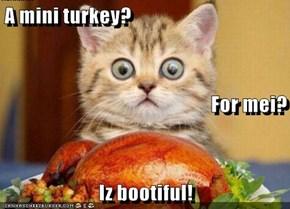 A mini turkey? For mei? Iz bootiful!