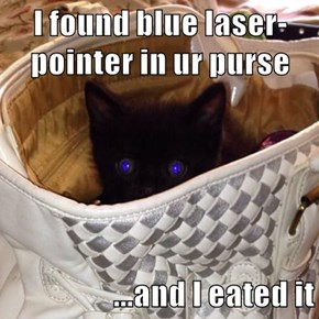 I found blue laser-pointer in ur purse  ...and I eated it