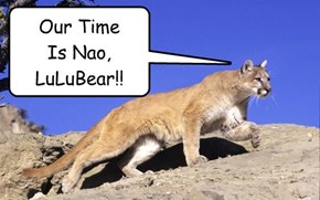 Our Time  Is Nao,  LuLuBear!!