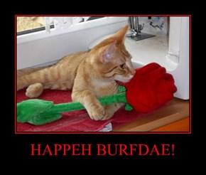HAPPEH BURFDAE!
